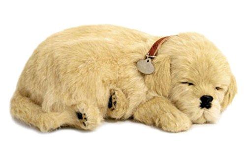Perfect Petzzz Golden Retriever cachorro que respira the Breathing Puppy