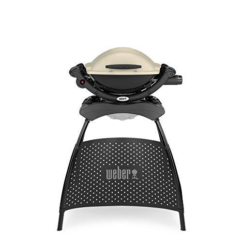 Weber Q 1000 with Stand - Titanium, Grey