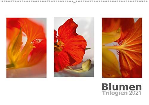 Blumen Trilogien (Wandkalender 2021 DIN A2 quer)