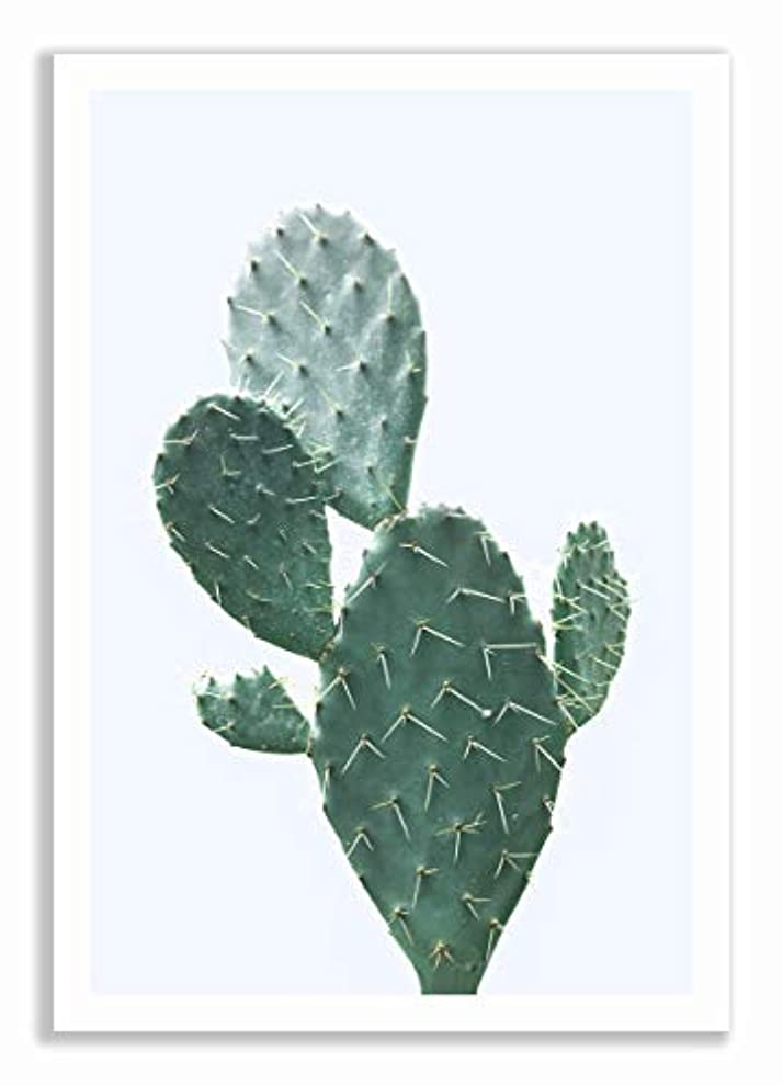 Cactus Blue Background with Black Satin Aluminium Frame and Mount, Multicolored, 70x100 lvktrpbsh6054