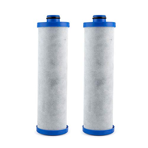 Clear Choice Replacement Water Filter (KW1) for Built-in RV Water Filtration Systems, 2-Pack
