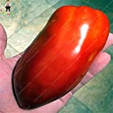 Vistaric 200 unids griego semillas de tomate raras herencia dulce jardinería semilla plantas en maceta Non Gmo semilla vegetal para DIY Home Garden plantación
