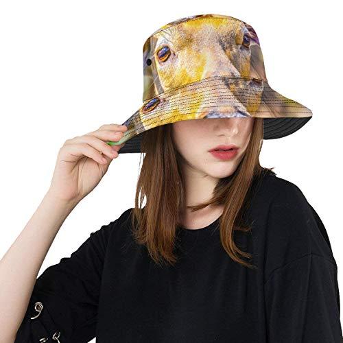Peces Sombrero para Hombre Ciervo Vestido de Moda Verano Unisex Pesca Sun...