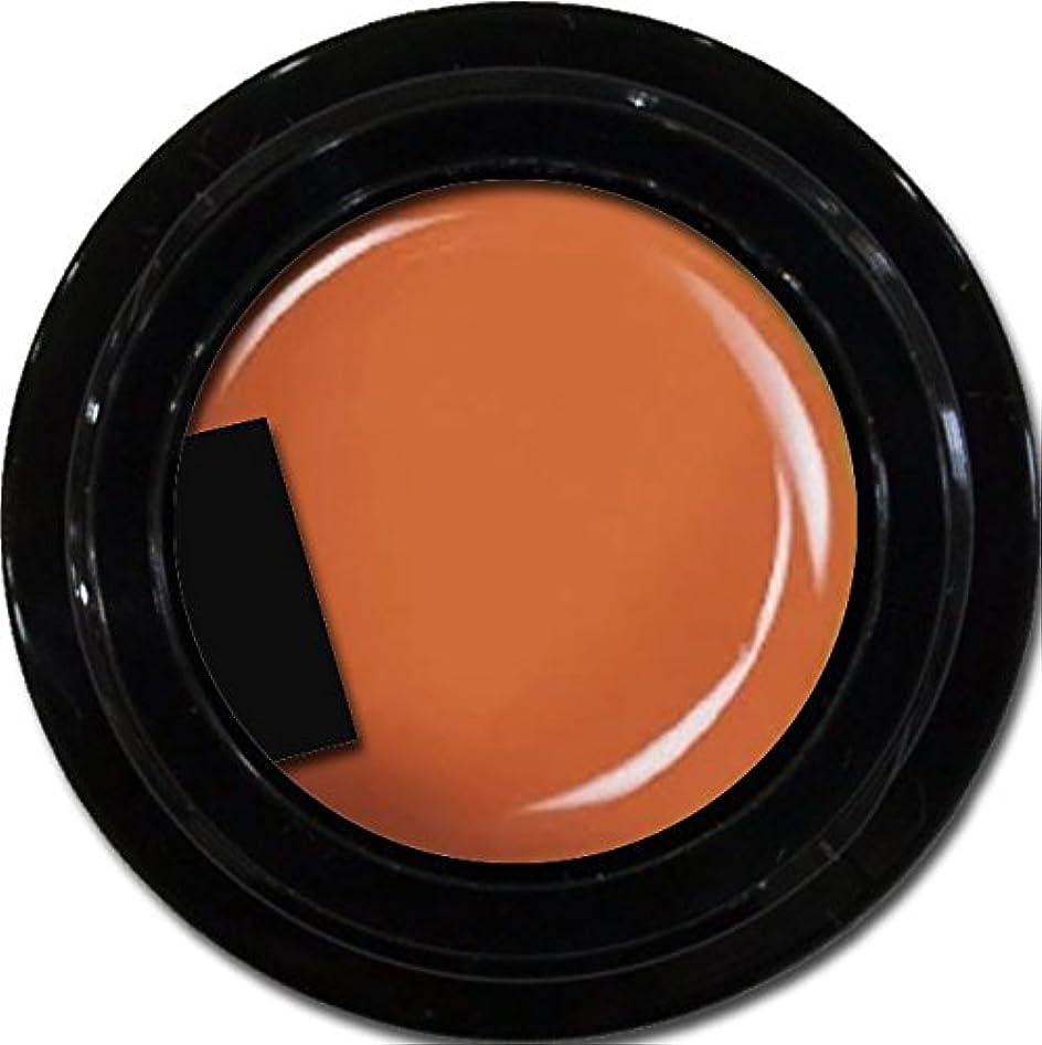 ギネス霊納屋カラージェル enchant color gel M303 Halloween 3g/ マットカラージェル M303 ハロウィーン 3グラム