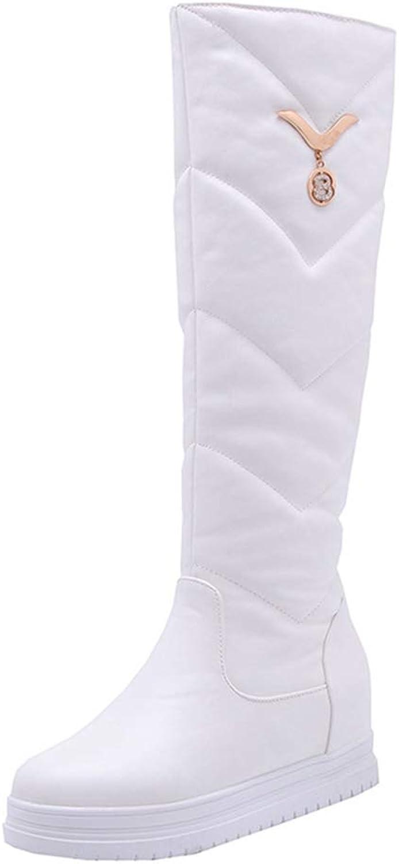 GIY Women's Winter Knee High Tall Waterproof Rain Snow Boots Fur Lined Fashion Wide Calf Arctic Snow Boot