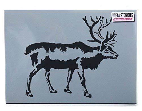 Hirsch Reh Rentier Schablone | Home Dekorativ Bastelkunst Schablone | Heimwerkerutensilien | Wiederverwendbar - semi-transparent Schablone, M/25x28cm