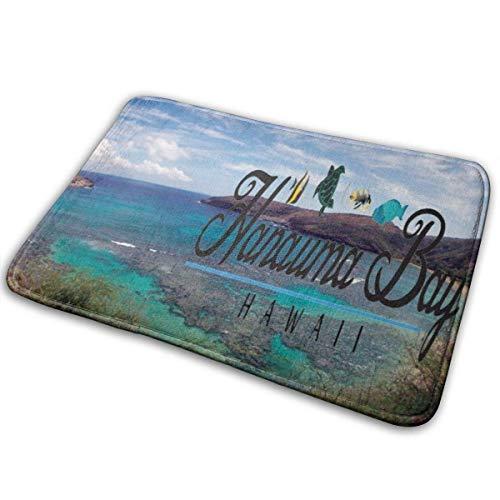 LXJ-CQ Extra weiche und saugfähige Teppiche, Badteppichmatte (31,5 x 19,5 Zoll) Hawaii Turtle und Hanauma Bay Fußmatten Fußmatten