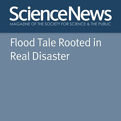 Flood Tale Rooted in Real Disaster cover art