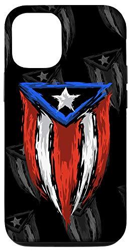 iPhone 12/12 Pro PR Flag Brush Style - Puerto Rico Flag - Boricua Case