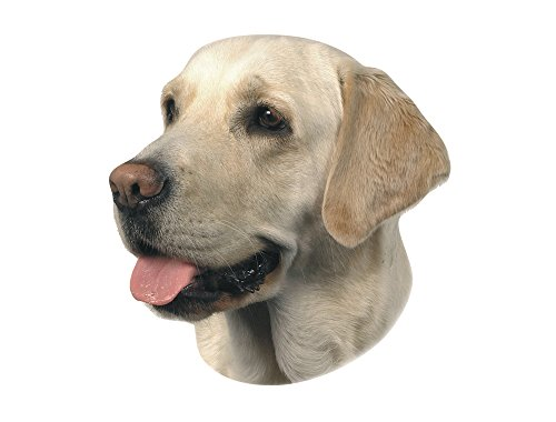 Nobby Aufkleber Labrador hell gelb 12 x 3,5 cm