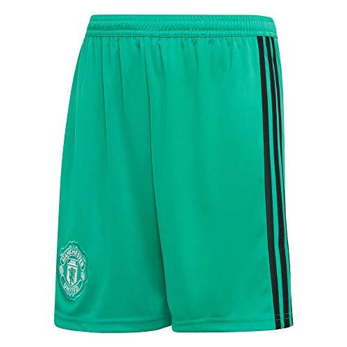 adidas Kinder 18/19 Manchester United Home Goalkeeper Short Torwart, Blaze Green/Black/White, 176 EU
