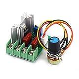 Yosoo Health Gear Contrôleur SCR 220 v, régulateur de Tension AC 50-220 V 2000 W SCR électrique régulateur de température/Vitesse du Moteur variateur de lumière