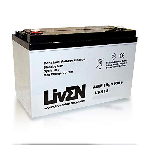 Batería AGM 12V 90Ah C-20 Sin Mantenimiento - Equipos Seguridad/Médicos/SAI/Comunicación/Emergencia