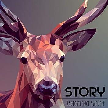 Story (Radio Edit)