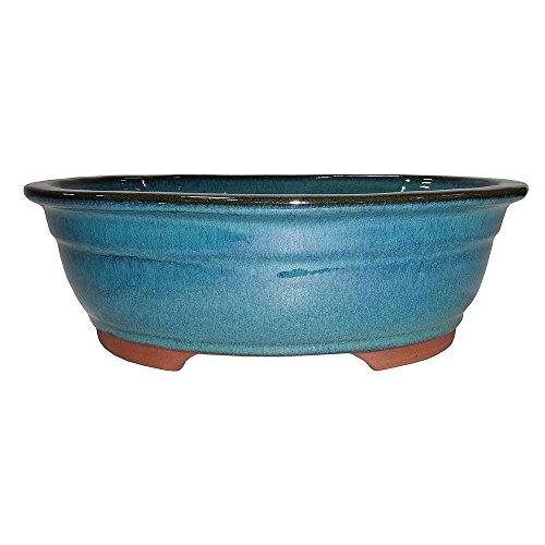 Brussel's 10' Oval Bonsai Glazed Ceramic Pot (Large, Teal)
