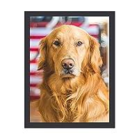 INOV ゴールデン リトリーバー犬 ポー アートフレーム インテリアフレーム 新生活応援 かわいい おしゃれ アートパネル インテリア ギフト プレゼント 30x40cm