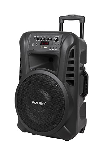 AZUSA MIK0135 Aktive Lautsprecherbox (mit 2 Drahtlosmikrofone, SD, Bluetooth, USB) 30,48 cm (12 Zoll) 20 W schwarz