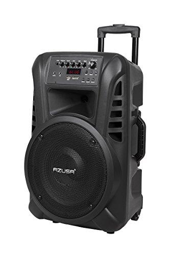 AZUSA MIK0135 Actieve luidsprekerbox (met 2 draadloze microfoons, SD, Bluetooth, USB) 30,48 cm (12 inch) 20 W zwart