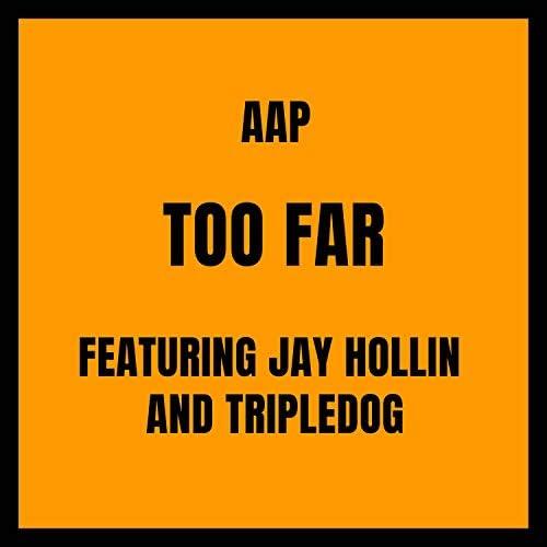AAP feat. Jay Hollin & Tripledog