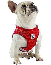 FeiLuo Hundsele universell bröstrem och koppeluppsättning, mjukt nät vadderad husdjurstsele för valp och katt, reflekterande justerbar andningsbar säker sele för utomhuspromenader, träning