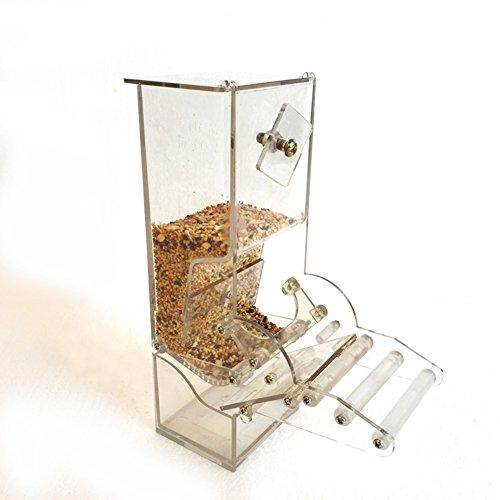 Farm & Ranch 1 alimentador automático para pájaros todo el yeso, capacidad duradera 400 g para entusiastas de la avicultura Bebederos Aves suministros para pájaros
