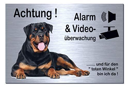 Rottweiler-Alarm-Video-Überwachung-Hund-30 x 20 cm-Schild-Hundeschild-Aluminium Edelstahloptik-Hunde-Tierschild-Warnschild-Hinweisschild 133-4 (133-4 -300 x 200 x 3 mm mit Klebepads)