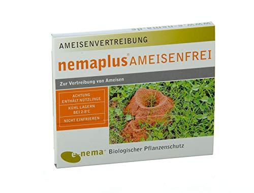 nemaplus® Ameisenfrei SF Nematoden zur Bekämpfung von Ameisen - 50 Mio. für 50m² oder 50 Ameisennester