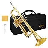 Eastar トランペット Bb調 Trumpet 初心者セット 清潔アクセサリー付 (ゴールド(学生用)) 開学 プレセント (ゴールド)