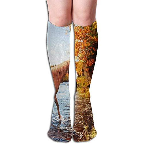 Not applicable stoking kamer patroon trendy vrouwen stoking decoratie sokken uitverkoop voor slingers Womens Decor sokken 50cm