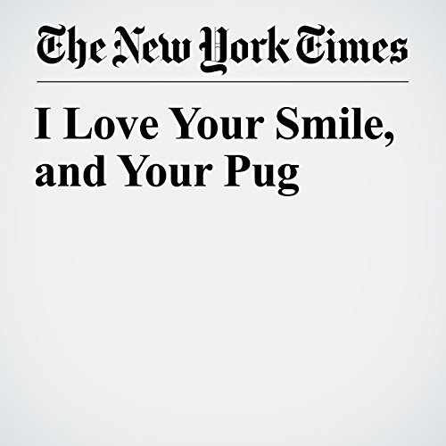 I Love Your Smile, and Your Pug copertina