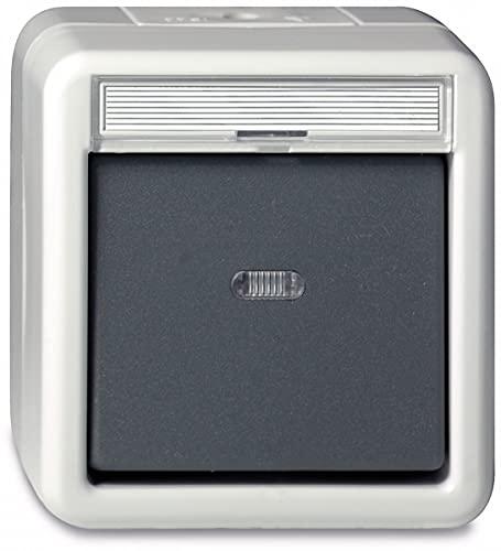Gira 015630 Wipptaster Wechsler Serienschalter WG AP grau
