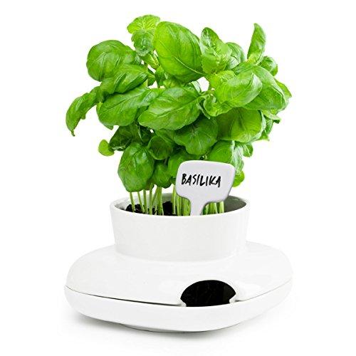 Sagaform Herbs&Spices Kräutertopf, klein