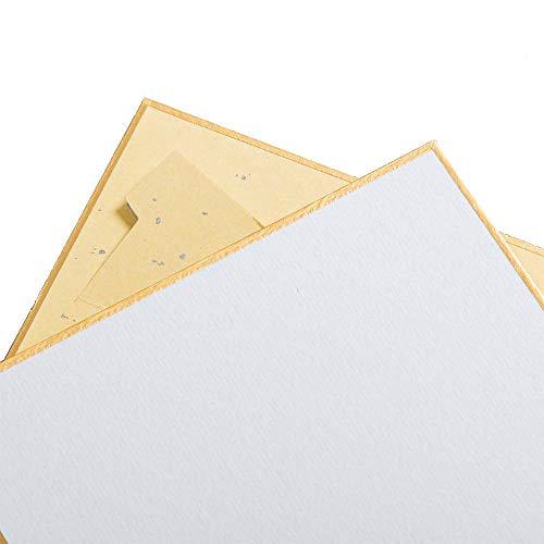 Luma Presents Shikishi+ - Cartón de dibujo (118 x 118 mm, 4 unidades, con soporte integrado, fabricado en Japón)