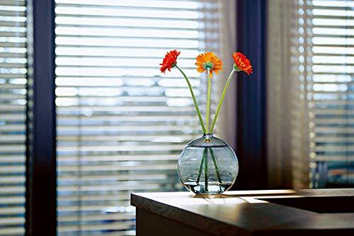 Philippi 123135 Vase Boule en Verre soufflé à la Main et chromé Diamètre 15 cm