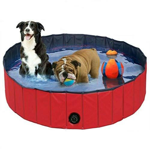 BingoPaw Piscina Plegable para Mascotas Bañera Portátil para Perros y Gatos Material de PVC Antideslizante y Resistente Adecuado para Interior al Aire Libre (160 x 30cm)