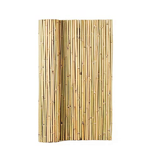 Mininfa Natural Rolled Bamboo Fence, Eco-Friendly Bamboo Fencing, 0.7 in D x 4 feet High x 6 feet Long, Bamboo Screen for Garden, Privacy