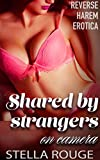 Shared by strangers on camera: Reverse harem erotica (Shared by strangers in public)