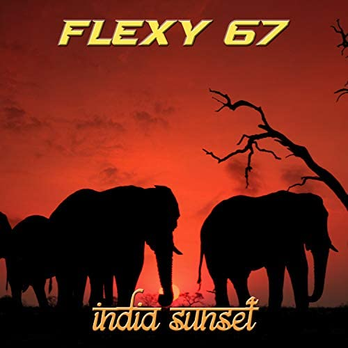 Flexy 67