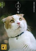 まる文庫 (講談社文庫)