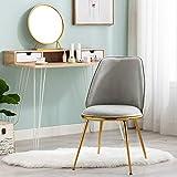 Altrobene Velvet Accent Chair, Modern Vanity Chair/Make Up Chair, Living Room/Bedroom/Dinging Room Chair, Golden Finished, Grey