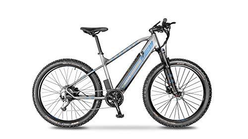 Argento Bicicletta elettrica Performance Mountainbike, Unisex Adulto, Grigio e Blu, taglia unica