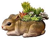 Desktop-Skulptur Kaninchen Modell Skulptur Tier Statue Sukkulenten Garten Simulation Tier Blume Pot Topfharz Dekoration Zubehör Balkon Dekoration