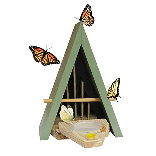 Wildlife World BTF5V1 House and Feeder Natural Habitat to Attract Butterflies to Your Garden (Blue)