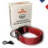 PETS PARADISE - Collier LED léopard Rouge Fluorescent Lumineux réglable Premium - Garantie à Vie - Rechargeable USB et étanche IP65 - Offrez Un Bijou à Votre Chien / Chiot - [Marque française] (Large