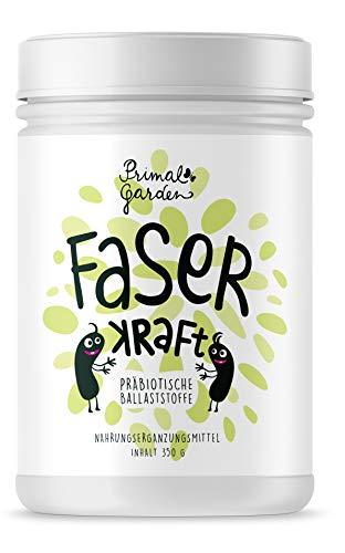 FaserKraft - Präbiotische Ballaststoffe | Darmgesundheit | Mit resistenter Stärke, Pektin, Inulin, Flohsamen, Beta Glucan und mehr! | Ohne Zusatzstoffe | Vegan | Pulver 350g | Glutenfrei