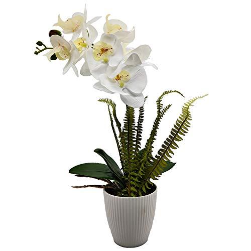 Aisamco Flor de orquídea Artificial con Maceta Blanca Flores de Phalaenopsis de plástico Falso Bonsai con Maceta para decoración de Centro de Mesa de Oficina de Boda en casa
