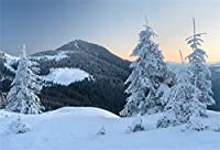 Qinunipoto クリスマス Merry Christmas 写真撮影用 背景布 背景 布 写真 摄影 撮影用 人物撮影 子供撮影 アイスのもり北欧スタイル 背景シート 写真館 撮影スタジオ用 自宅用 パーティー ビニ3.5x2.5m