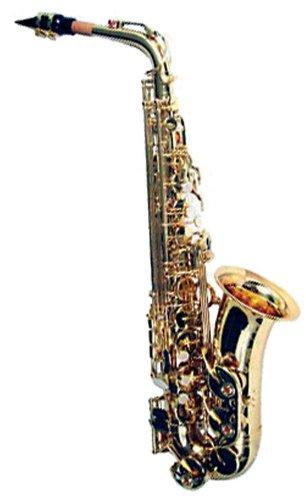 Valentino DC-102L - Saxofón alto (para nivel principiante)