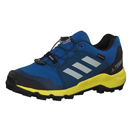Adidas Terrex GTX K, Zapatillas de Deporte Unisex niño, Multicolor (Belazu/Griuno/Amasho 000), 28 EU