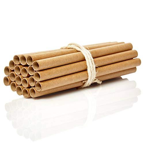 bambuswald© 100 Nisthülsen mit Ø 10mm   15cm Länge für Wildbienen - 100% ökologische Pappröhrchen für Insektenhotel, Niströhren & Bruthülsen als Füllmaterial für Bienenhotel